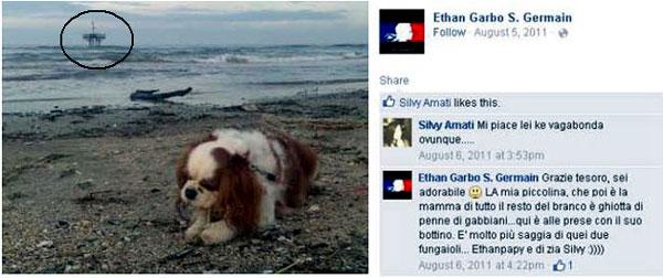 Ethan Garbo cane e piattaforma