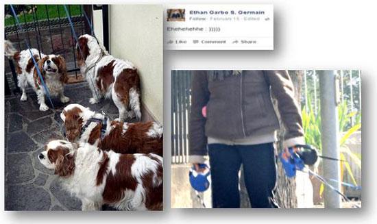 Ethan Garbo con cani e guinzagli